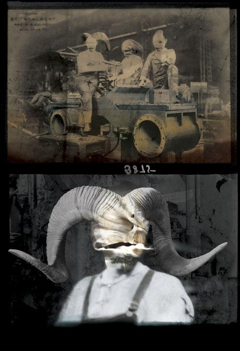 viktor-koen-echidna